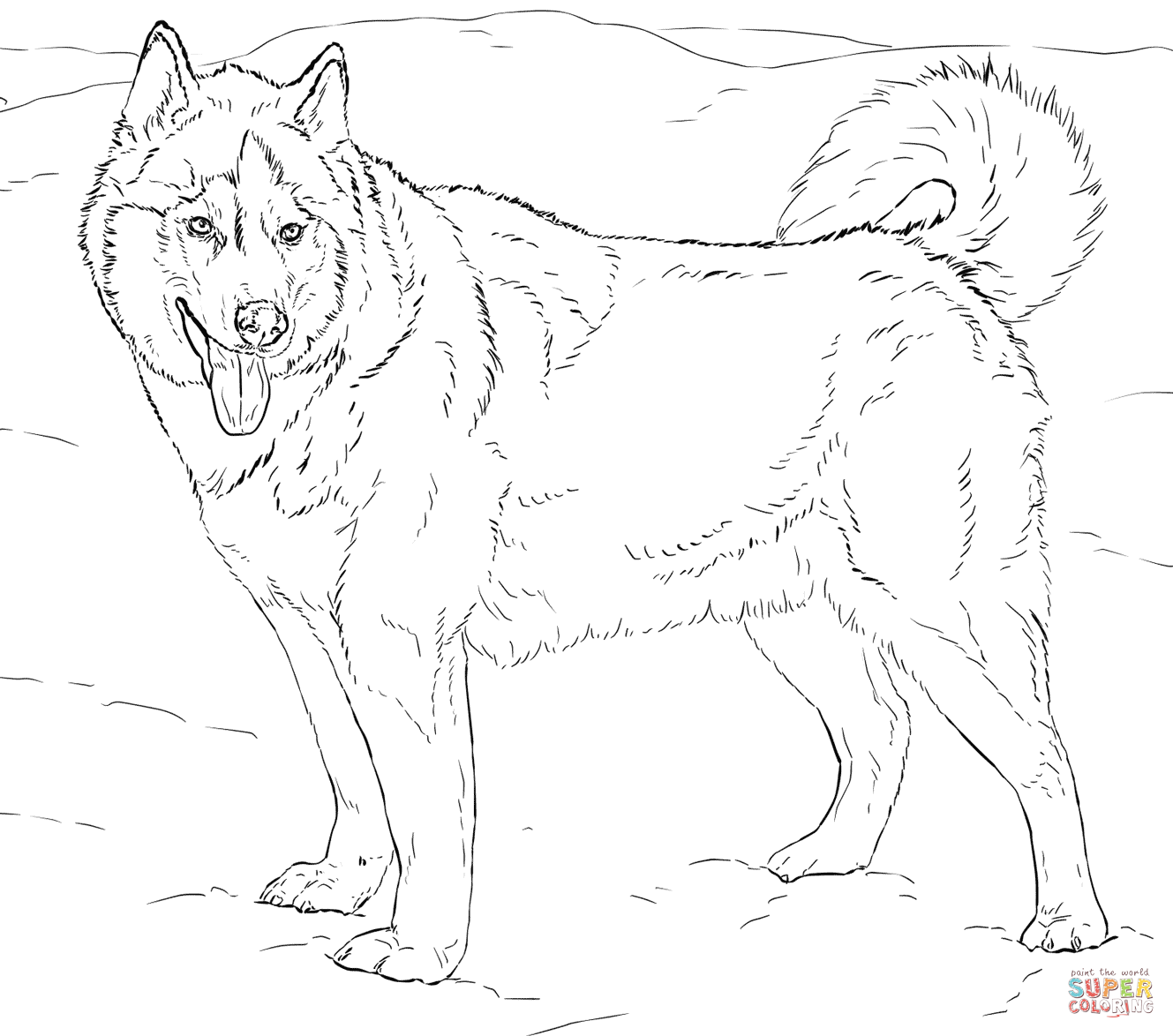 Husky coloring #8, Download drawings