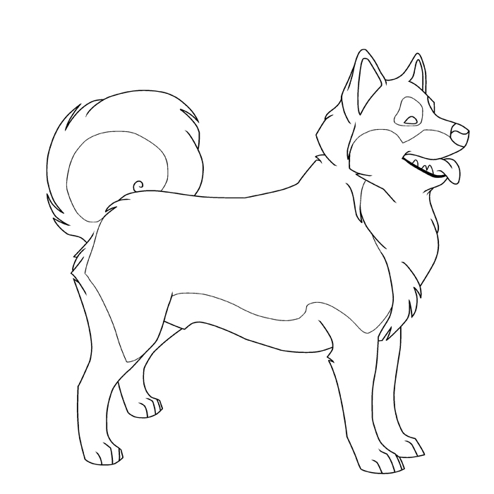 Husky coloring #3, Download drawings