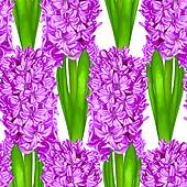 Hyacinth clipart #8, Download drawings