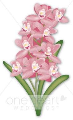 Hyacinth clipart #15, Download drawings