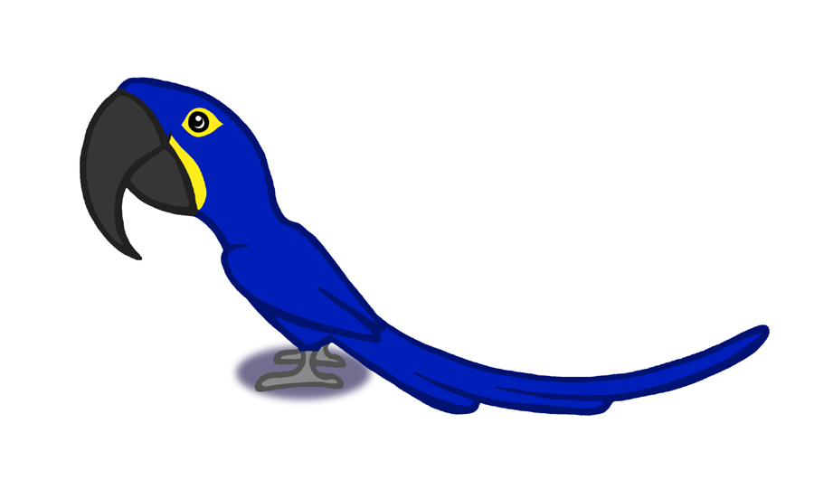 Hyacinth Macaw clipart #18, Download drawings