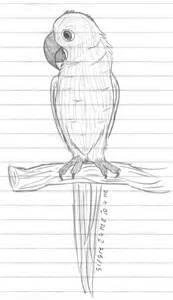 Hyacinth Macaw coloring #5, Download drawings