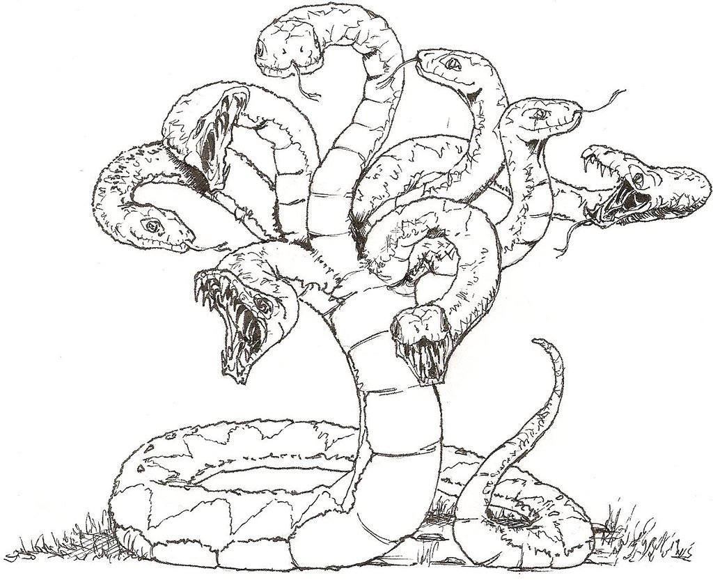 Hydra coloring #3, Download drawings