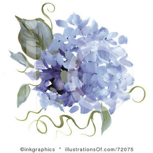Hydrangea clipart #5, Download drawings