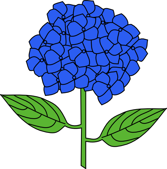 Hydrangea clipart #1, Download drawings