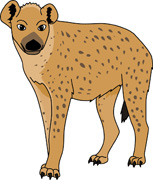 Hyena clipart #19, Download drawings