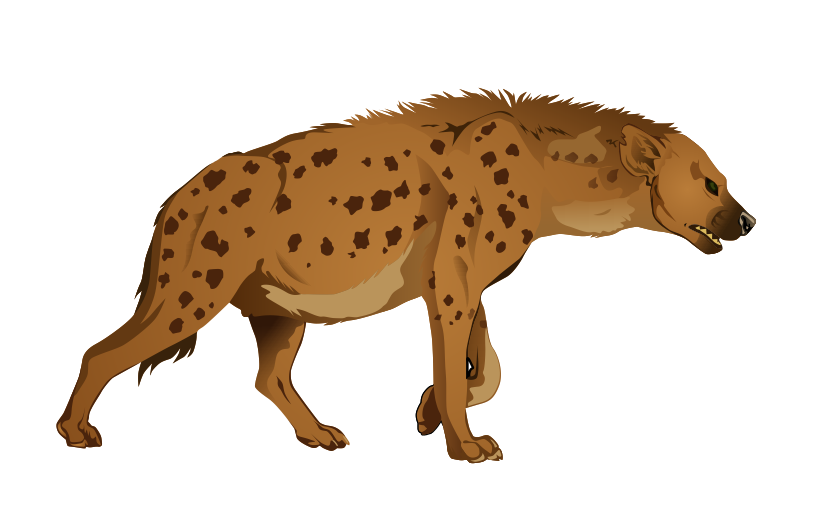 Hyena clipart #9, Download drawings