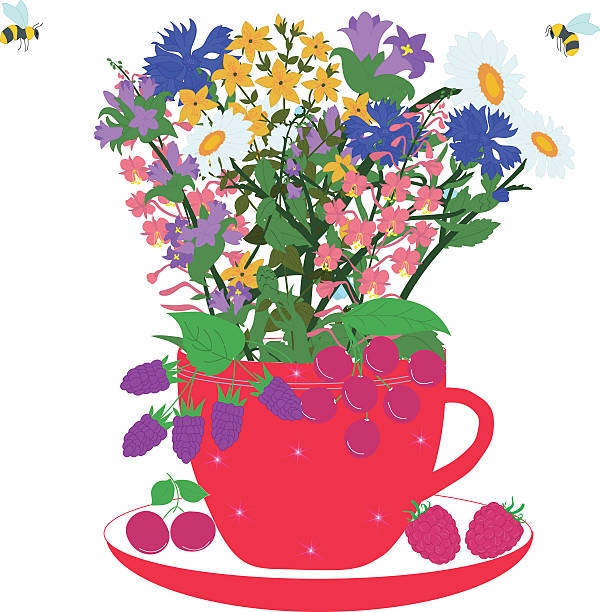 Hypericum clipart #11, Download drawings
