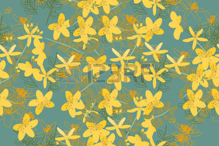 Hypericum clipart #10, Download drawings