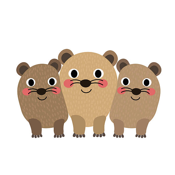 Hyrax clipart #12, Download drawings