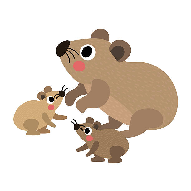 Rock Hyrax clipart #14, Download drawings