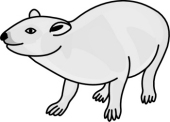 Rock Hyrax clipart #19, Download drawings