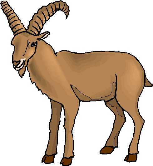 Ibex clipart #9, Download drawings