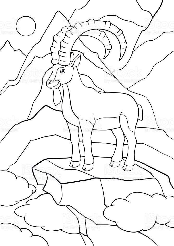 Ibex coloring #3, Download drawings