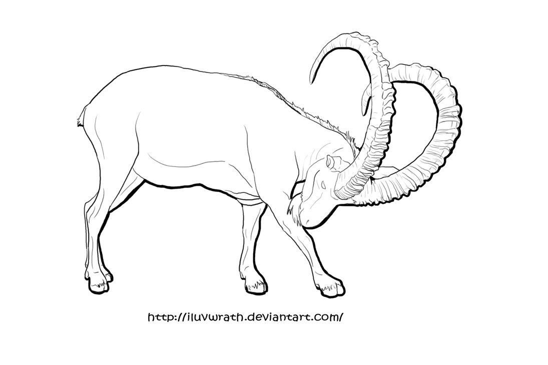 Ibex coloring #1, Download drawings