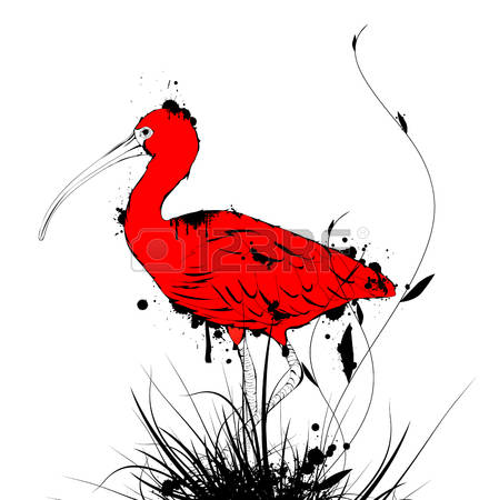 Ibis clipart #1, Download drawings
