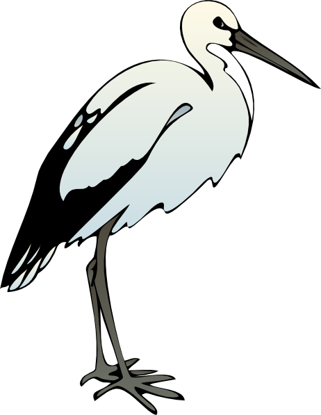 Ibis clipart #6, Download drawings