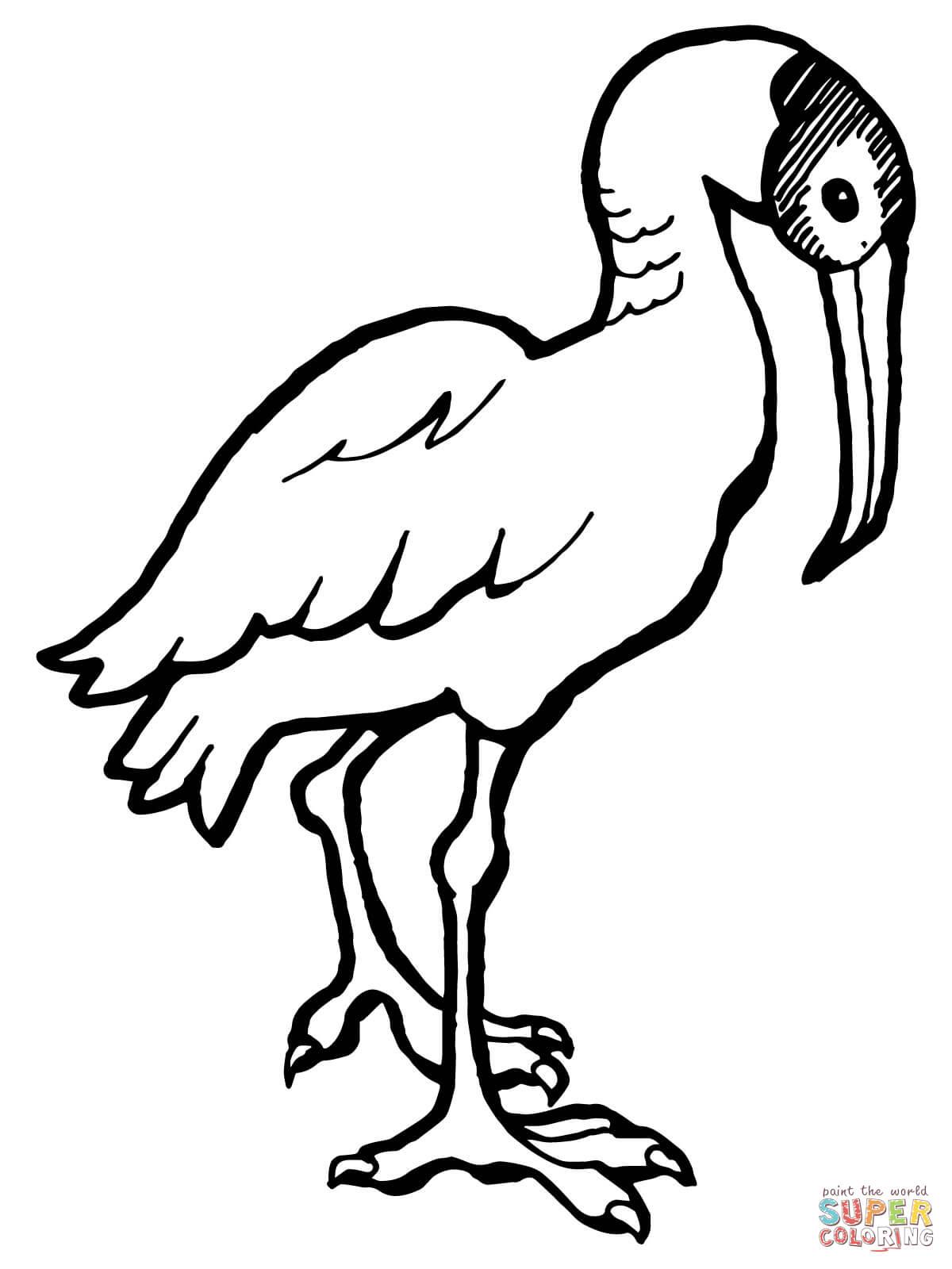 Scarlet Ibis coloring #7, Download drawings