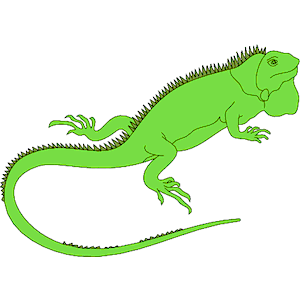 Iguana clipart #3, Download drawings