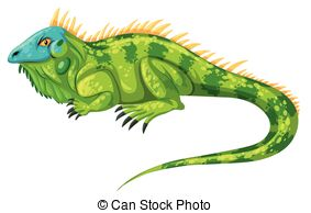 Iguana clipart #6, Download drawings