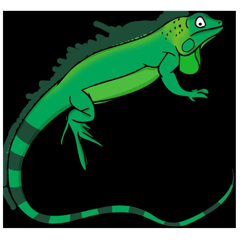 Reptile clipart #17, Download drawings