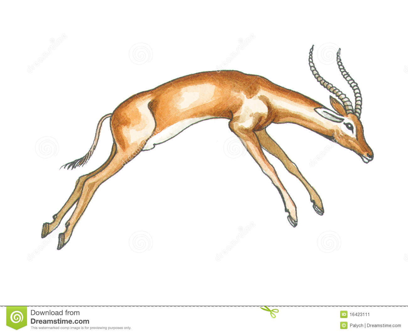 Impala clipart #10, Download drawings