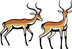 Impala clipart #16, Download drawings