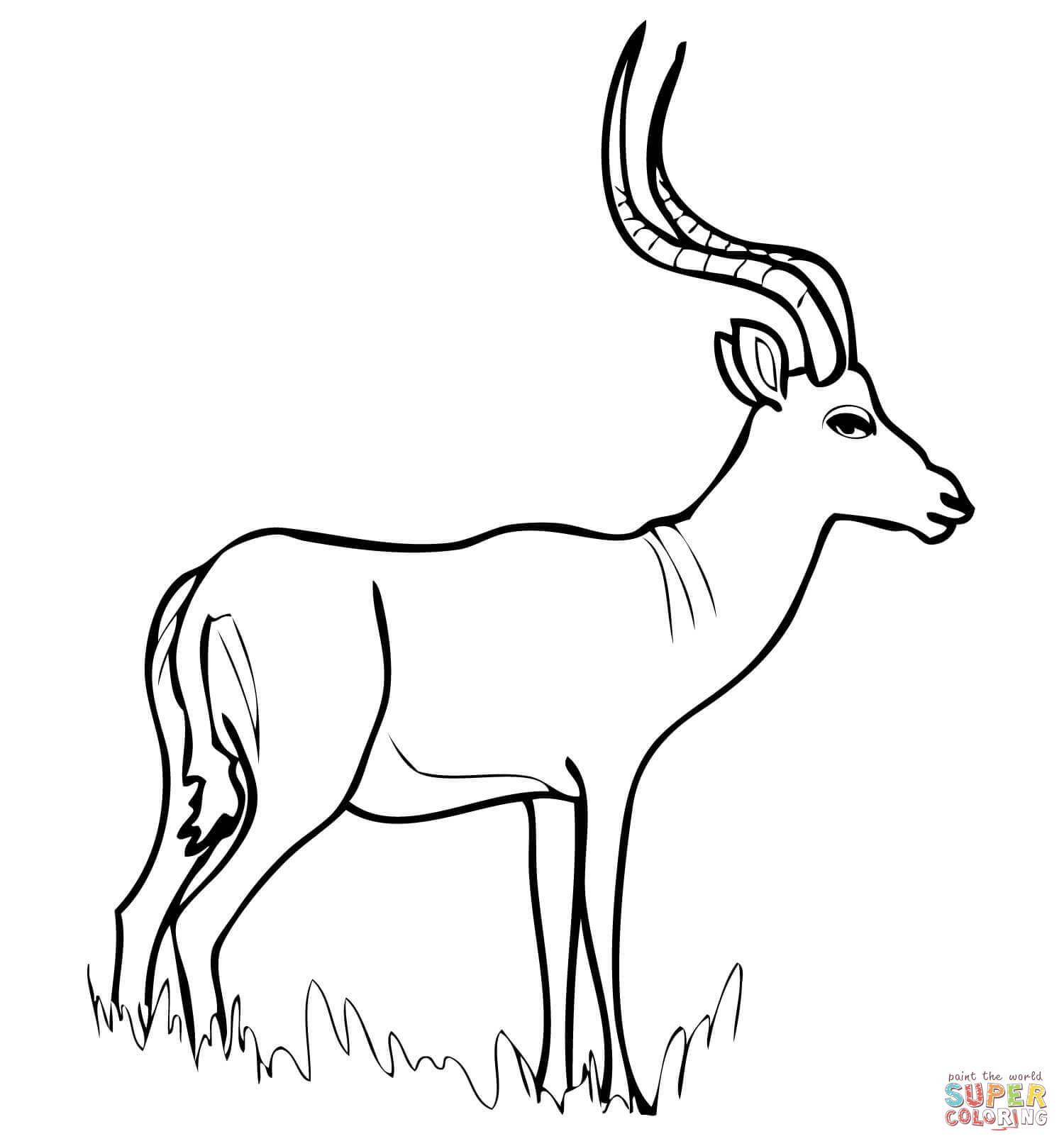 Impala coloring #10, Download drawings