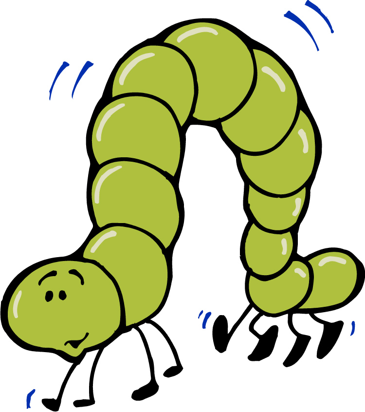 Inchworm clipart #10, Download drawings