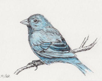 Indigo Bunting svg #4, Download drawings