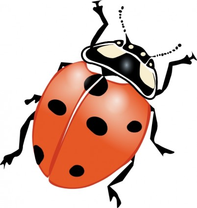 Insect clipart #7, Download drawings