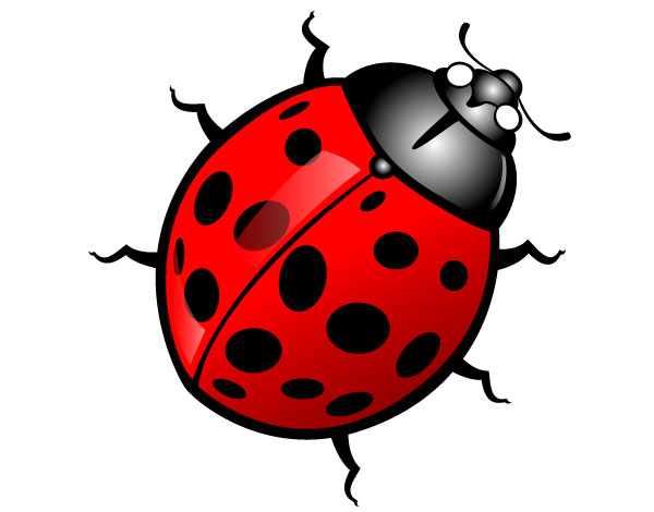 Bug clipart #20, Download drawings