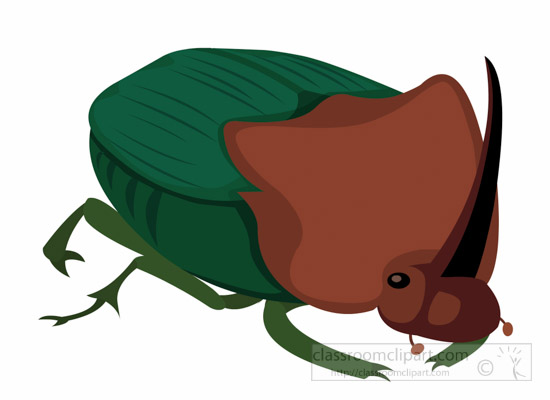 Dung Beetle clipart #14, Download drawings