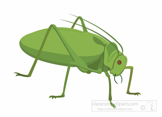 Insect clipart #14, Download drawings