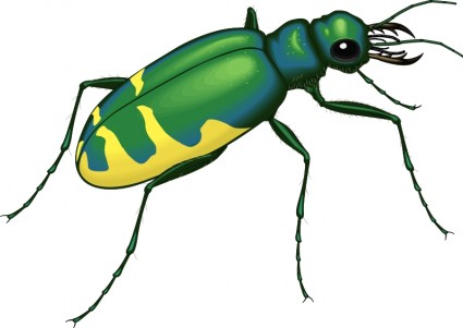 Insect svg #14, Download drawings