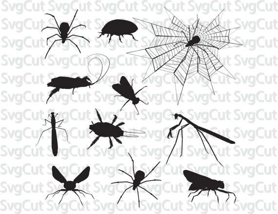 Insect svg #13, Download drawings