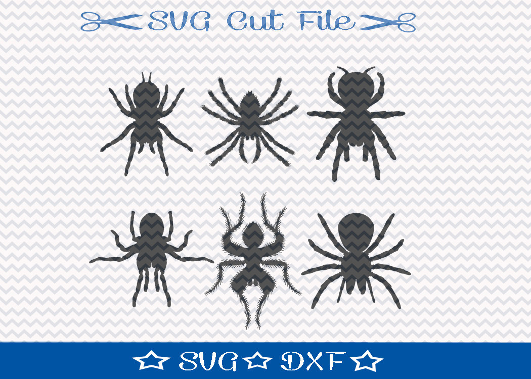 Insect svg #3, Download drawings