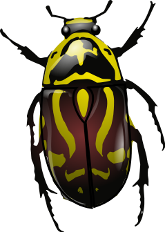 Insect svg #4, Download drawings