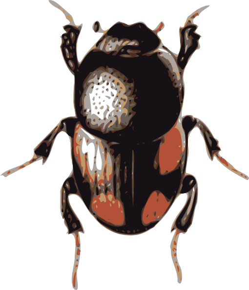 Insect svg #11, Download drawings