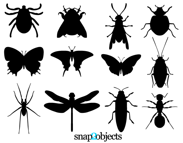 Insect svg #19, Download drawings