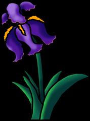 Iris clipart #18, Download drawings