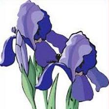 Iris clipart #14, Download drawings