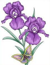 Iris clipart #17, Download drawings