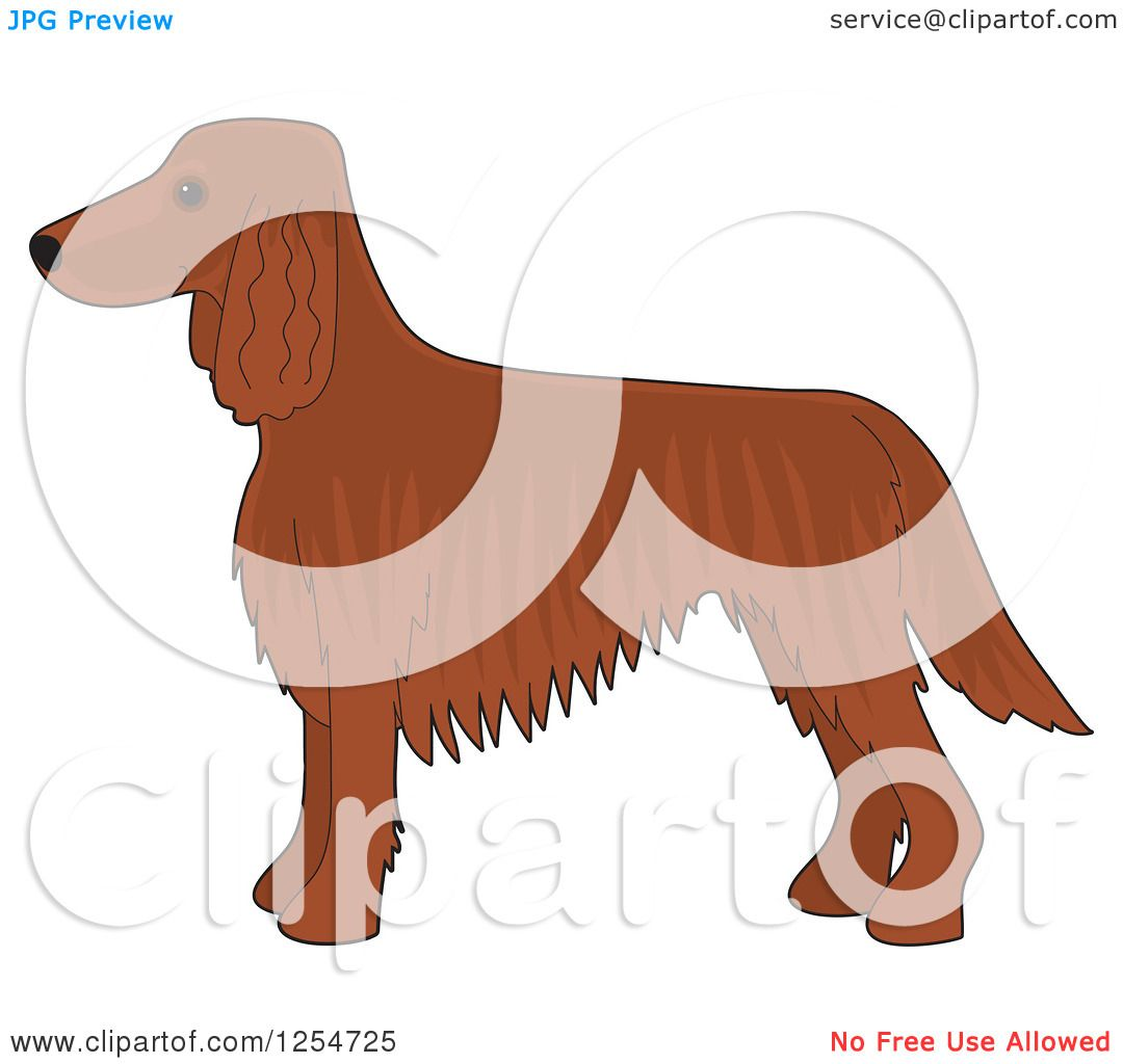 Irish Setter clipart #2, Download drawings