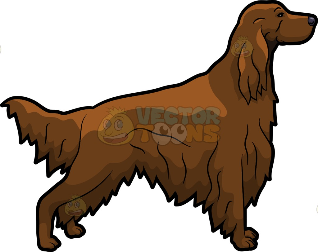 Red Setter clipart #13, Download drawings