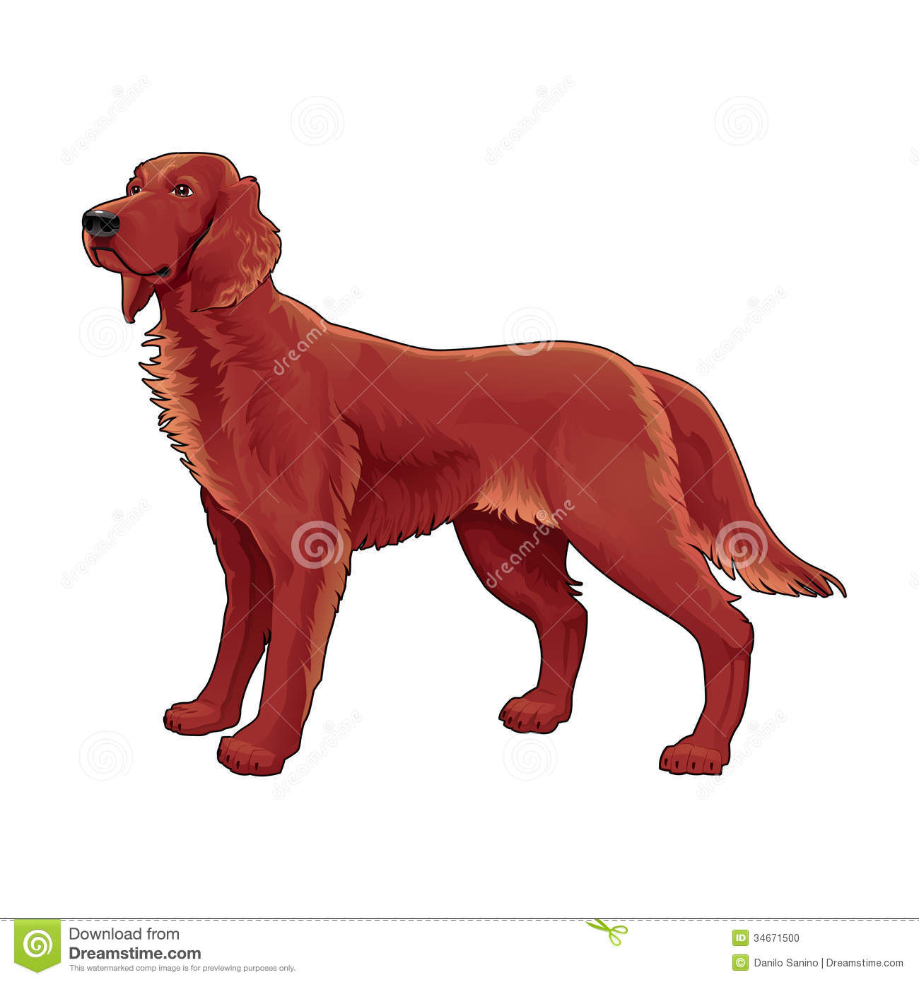 Red Setter clipart #17, Download drawings