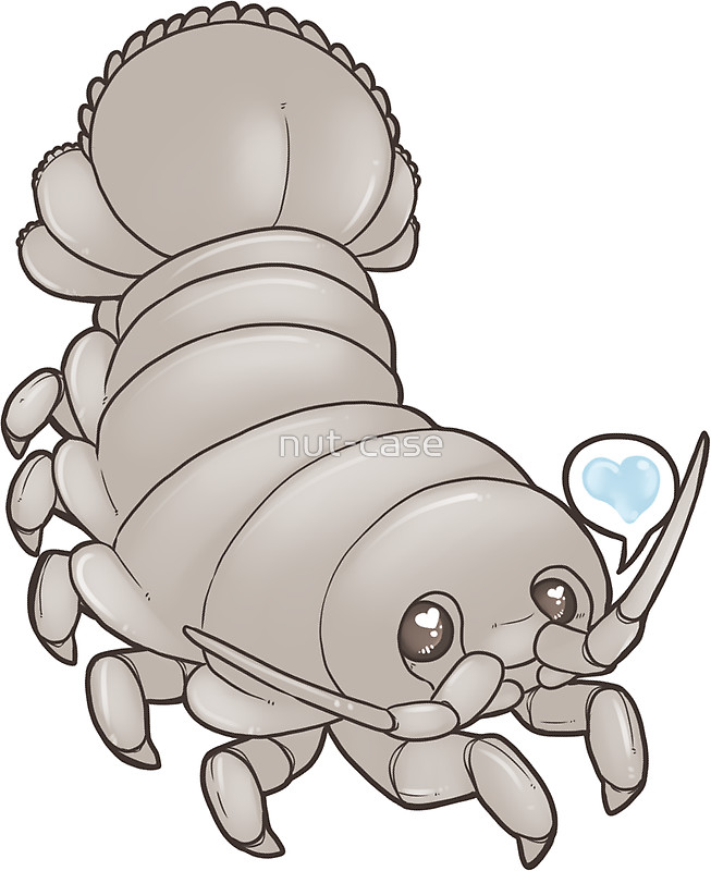 Isopod clipart #9, Download drawings