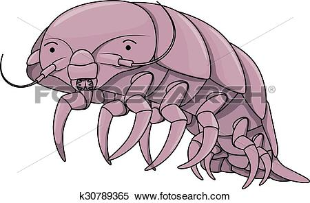 Isopod clipart #19, Download drawings