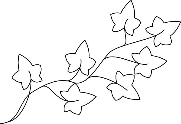 Ivy clipart #18, Download drawings