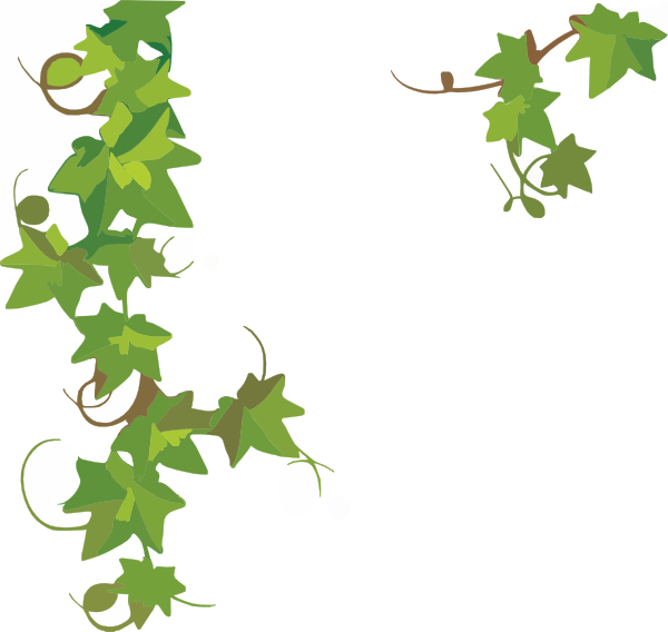 Ivy clipart #13, Download drawings